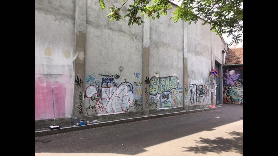 Mutevole – Murales 2018 (12)